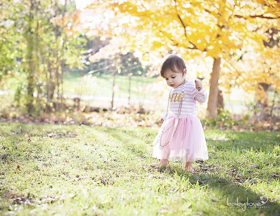 Northville Michigan One Year Old Baby Photographer Captures Little Girl