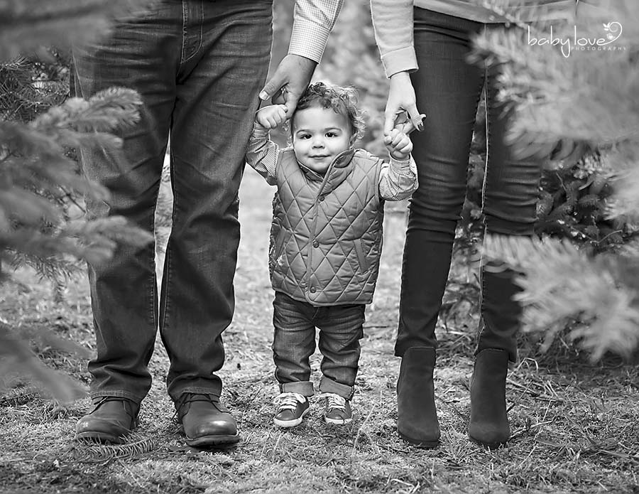 Oakland Township Baby Photographer Captures one year old boy