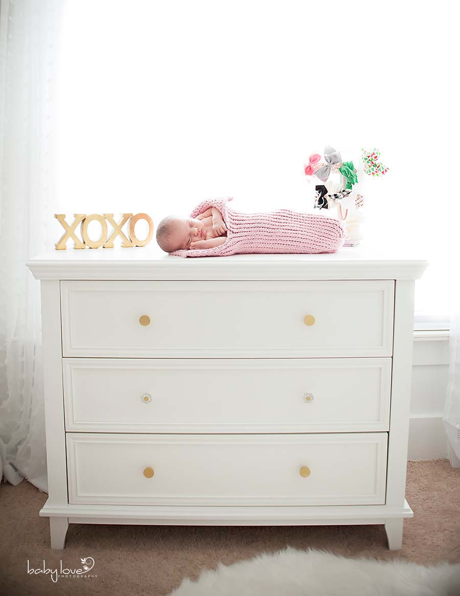 Berkley Michigan Newborn Photographer